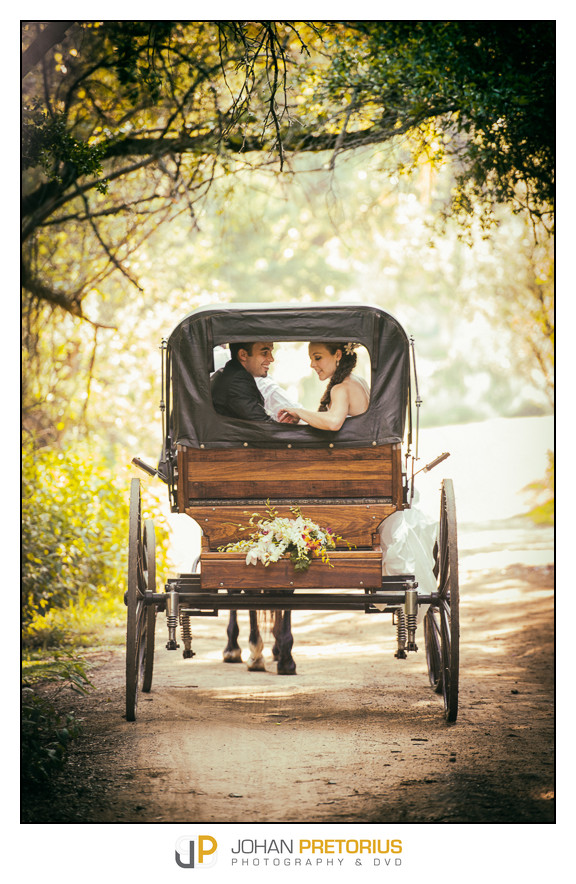 The wedding of Eliza & Andre Botha
