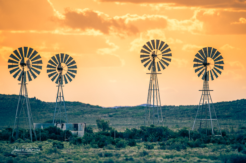 Farm shoot in the Karoo by Bloemfontein Photographer Johan Pretorius